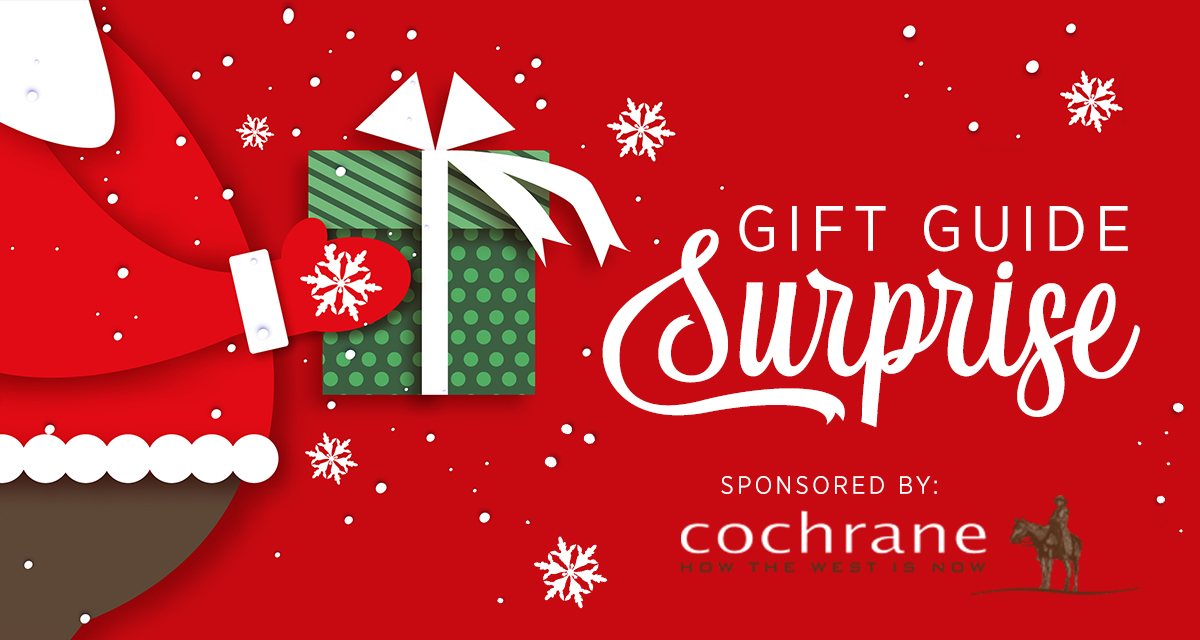 Gift Guide Surprise