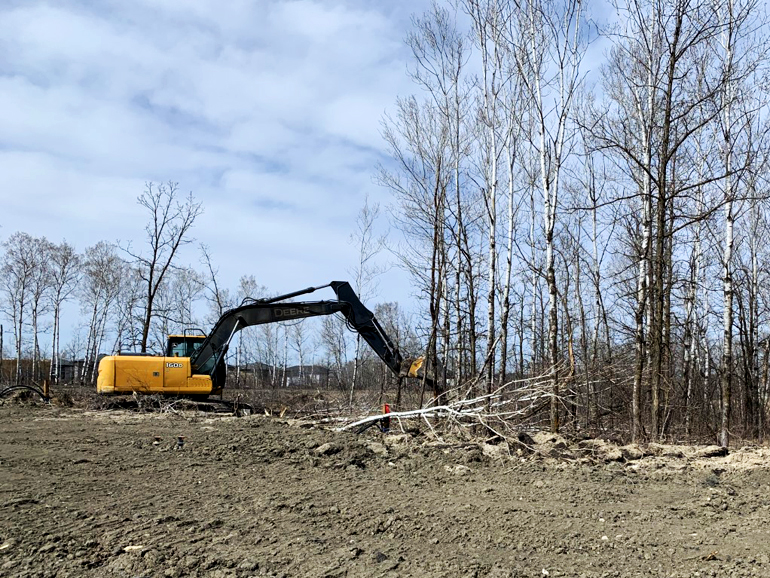An excavator knocks down trees