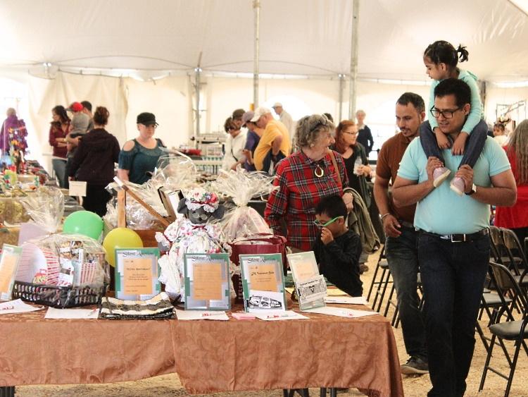 Bearspaw Fair